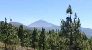 Tenerife Top 10 Attractions